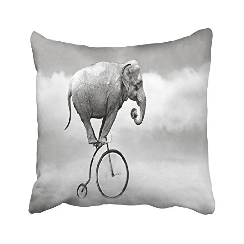 Primitive Font (Accrocn Throw Pillow Covers funny Elephant font Bicycle sky animal fantasy art Pillowcases Polyester 18 x 18 Inch Square With Hidden Zipper Home Sofa Cushion Decorative Pillowcase)