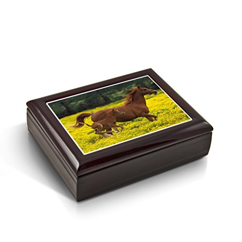 Mother And Baby Horse (Foal) In The Prairie Tile Musical Jewelry Box - Rock of Ages - Christian Version by MusicBoxAttic