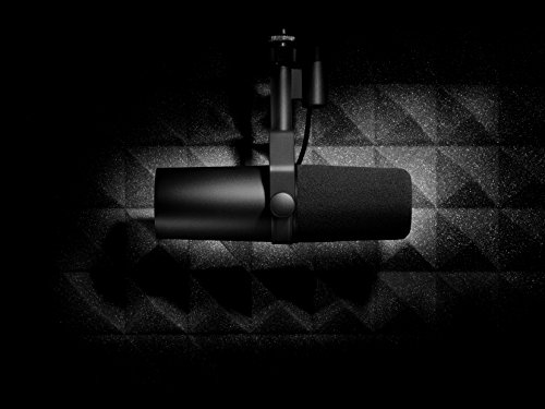 41PS 1opn0L - Shure SM7B Vocal Dynamic Microphone, Cardioid