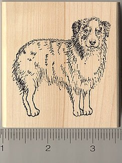 Australian Shepherd Rubber Stamp - Wood Mounted