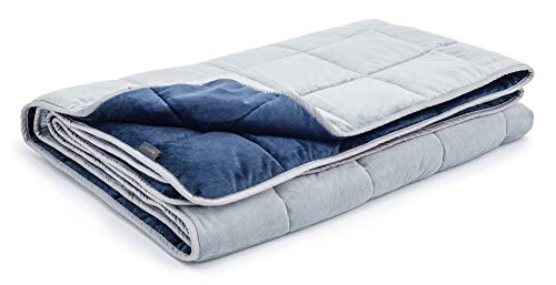 Cheap LUXOME Queen Size Weighted Blanket for Adults with Integrated Minky Cover | 18-20lbs | 60