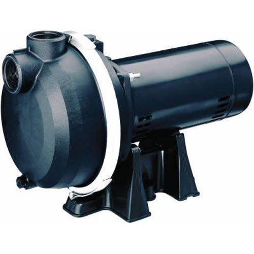 (PENTAIR WATER 123342 MP 2 hp Sprinkler Pump)