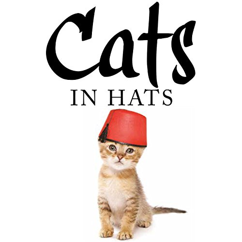 Cats in Hats ()