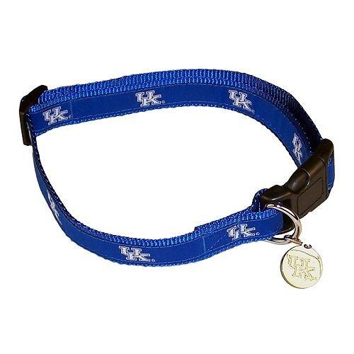 NCAA Kentucky Wildcats Dog Collar, Medium/Large