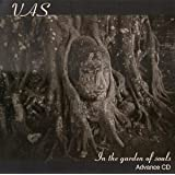 In the Garden of Souls [Import anglais]