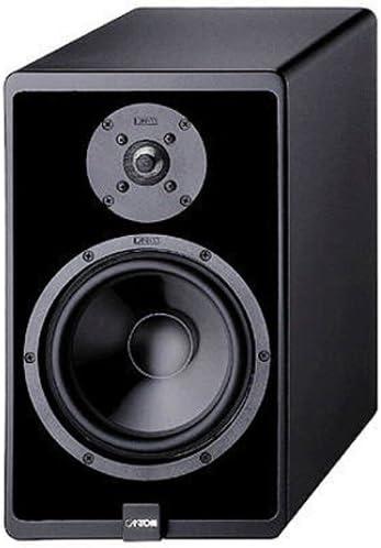 Canton Ergo 22 Dc Stand Lautsprecher Paar Buche Audio Hifi