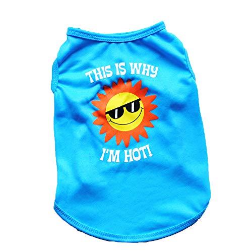 ABASSKY Pet Puppy Summer Lollipop Shirt Small Dog Cat Pet Clothes Vest T Shirt (S, Blue) -