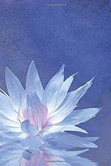 Mindfulness Journal Paperback