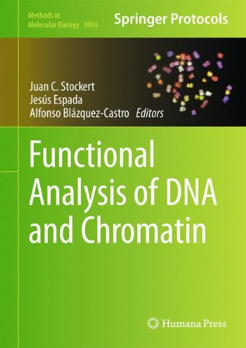 Functional Analysis of DNA and Chromatin (Methods in Molecular Biology)