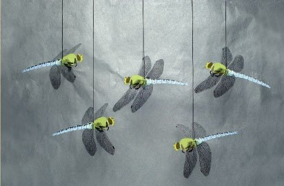 Dragonflies Mobile