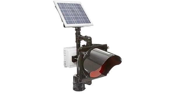 Tapco 2180-BBSAY BlinkerBeacon Solar Flashing Amber Lens LED Beacon 4-1//2 OD Pole Yellow