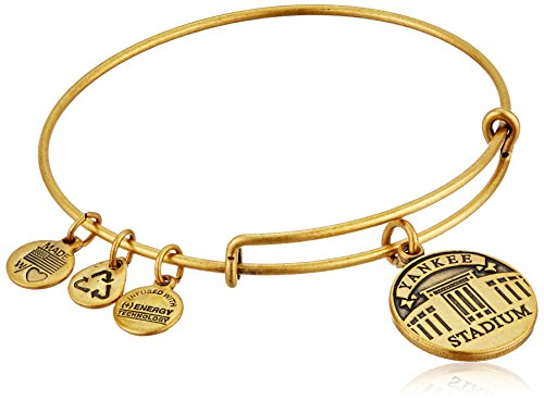 Alex Ani Stadium Expandable Bracelet
