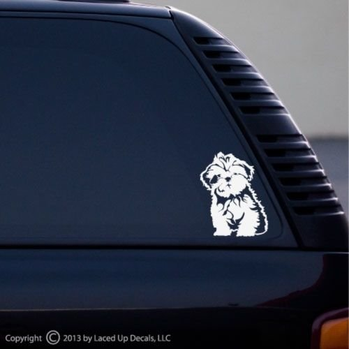shih tzu decal - 2