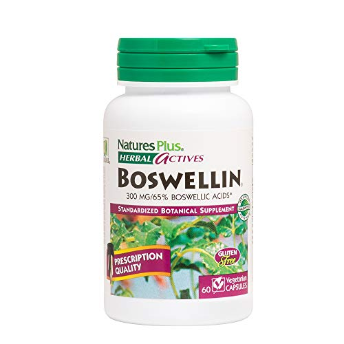 Nature's Plus Herbal Actives Boswellin – 300 mg – 60 Vegetarian Capsules For Sale