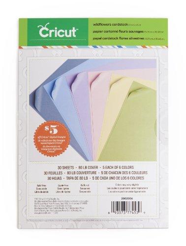 Cricut Textured Cardstock, 8.5-Inch by 12-Inch, (Cricut Wild Card)