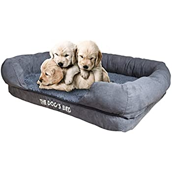 Amazon.com : Friends Forever Orthopedic Dog Bed Lounge