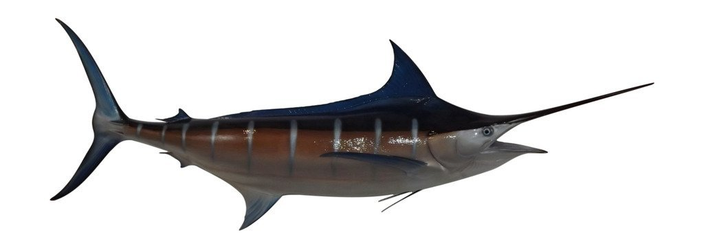 116'' Blue Marlin Two Sided Wall Mount Replica, Affordable Coastal Decor - Indoors Or Outside