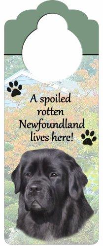 Newfoundland Wood Sign