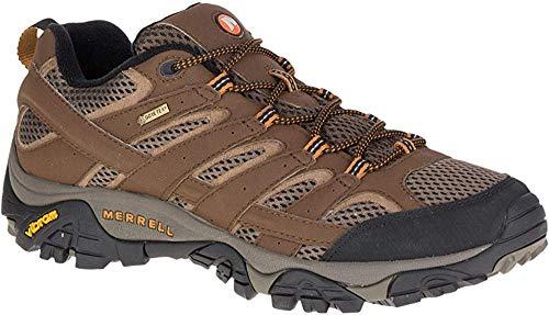Merrell Men's Moab 2 Gtx Hiking Shoe, Earth, 11 M US (Merrell Moab Gore Tex Waterproof Walking Shoes)