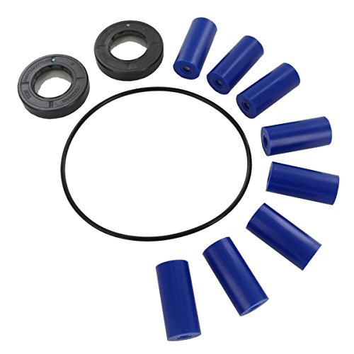 Piston Pump Hydraulic (Hypro 3430-0381 Repair Parts Kit for 7560 Series)