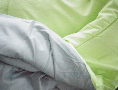 Grey/Lime Reversible Comforter - Twin XL Twin Extra Long