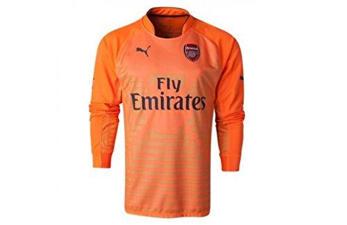 Puma Men's AFC GK Long Sleeve Shirt with Sponsor, Large, Fluro Orange-Ebony-Flame Orange