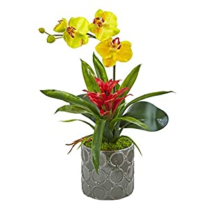 Artificial Flowers -Mini Phalaenopsis Orchid and Bromeliad Yellow in Gray Vase 75
