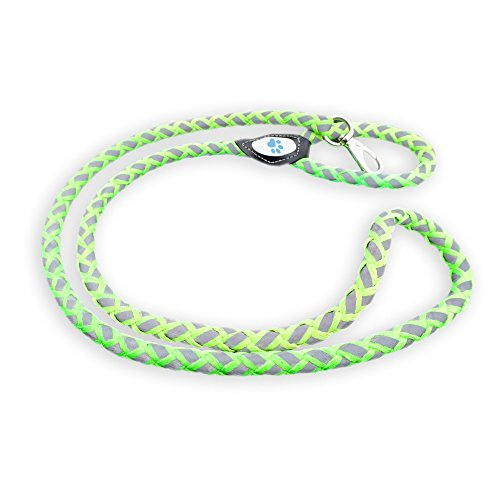 reflective-dog-leash-climbing-rope-leash-supported-by-an-outer-braided-nylon-for-increased-durabilit