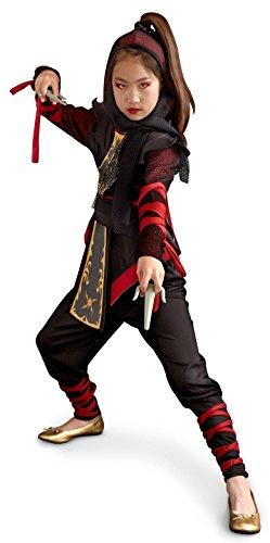 Ninja (Ninja Dragon Costumes)