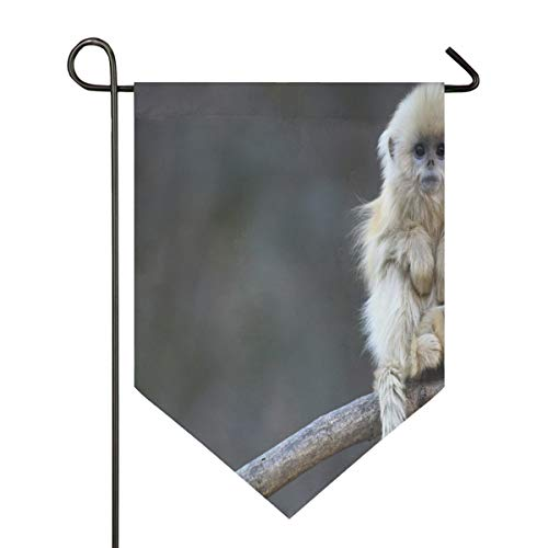Fabulous Monkey Garden Flag House Banner Long Polyester Decorative Flag for Wedding Party Yard Home Outdoor Decor Season Porch Lawn Double Sided 12 x 18.5 -