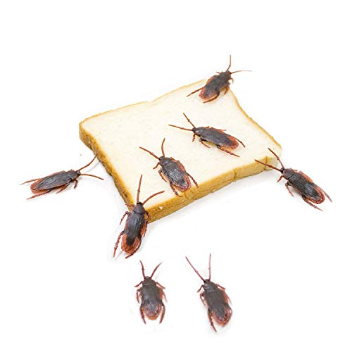 Niu-Man Pack of 100 Fake Cockroach Roach Novelty Roaches Bugs Plastic Realistic Insects Look Real Prank Trick Toys Halloween Party Favors Creepy Decoration Supplies Bug Toys -