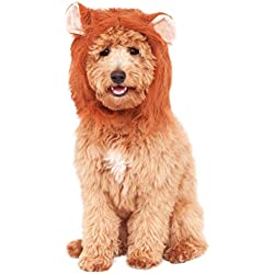 Rubies Costume Company Lion's Mane Costume Accessory for Pets, Small/Medium