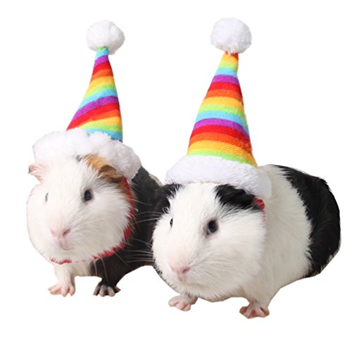 Small Animal Hat Hamster Birhthday Hat Cat Christmas Holiday Hat Rabbit Hat for Small Animals (Hamster Rainbow Hat) -