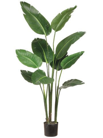 5' Bird of Paradise Plant in Plastic Pot Green by Silk Decor