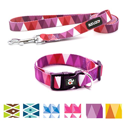 azuza Dog Collar and Leash Set, Adjustable Nylon Collar with Matching Leash,Purple Flag,Medium