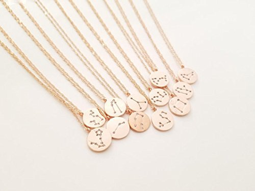 Aquarius,Pisces,Aries,Taurus,Gemini,Cancer,Leo,Virgo,Libra,Scorpio,Sagittarius,Capricorn/Zodiac Jewelry/Celestial Jewelry/Gift For Women/Rose Gold necklace/Birthday gift/Minimalist