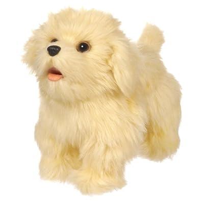 Furreal Friends Cookies Walkin Puppies Golden Retriever from Hasbro