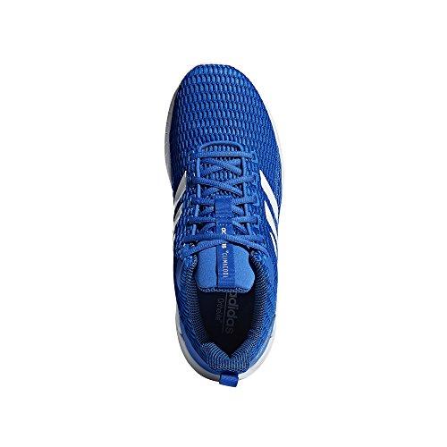 blanc adidas CC Uomo bleu bleu Scarpe Questar intense Running rzxqwZYrC