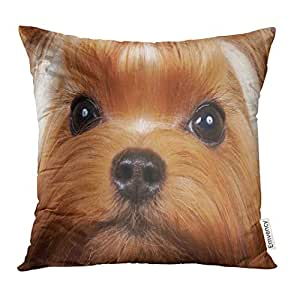Amazon.com: Golee Throw Pillow Cover Brown Dog Portrait of