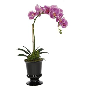 House of Silk Flowers Artificial Lavender Phalaenopsis Orchid in Black Ceramic Urn 28
