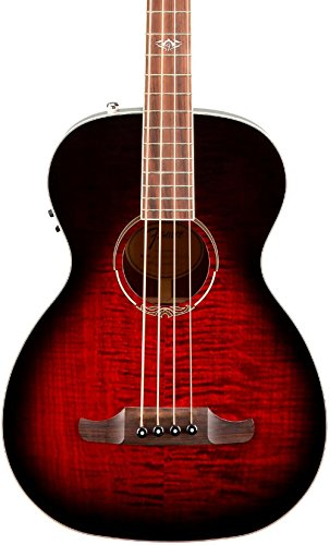 Fender T-Bucket 300
