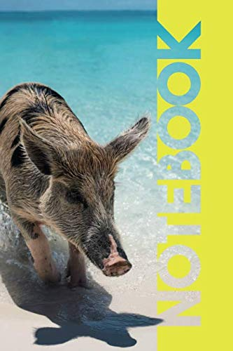 Notebook: Pig Beach Practical Composition Book for Cute Piglet Fans by Molly Elodie Rose