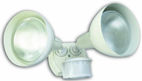 Coleman Cable Flood Lights