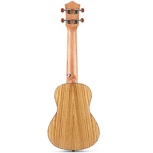Donner Zebrawood Ukulele Concert DUC-2 23 inch Ukulele Kit with Case Tuner Strap Nylon String - Image 2
