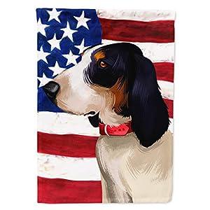 Caroline's Treasures CK6407GF Ariegeois Dog American Flag Flag Garden Size, Small, Multicolor 40