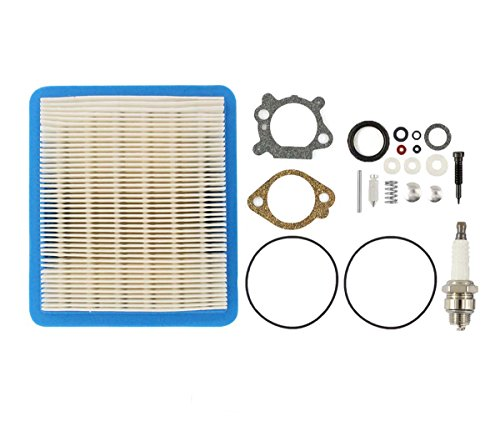 Carburetor Overhaul Carb Rebuild Air Filter Kit For Briggs & Stratton 498260 492495 493762 5 HP Quantum Vertical Shaft Engine Lawn Mower Yard Machine Sears craftsman 4 cycle Snowblower Snow Thrower (Briggs & Stratton 498260 Carburetor Overhaul Kit)