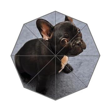 Moda paraguas francés Bulldog Custom Foldable Umbrella mujeres paraguas hombres paraguas niños paraguas lluvia paraguas resistente