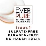 L'Oreal Paris EverPure Sulfate Free Frizz-Defy