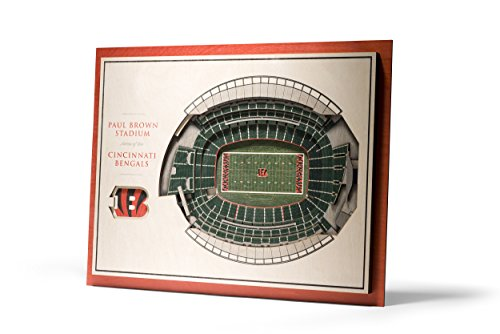 NFL Cincinnati Bengals 5-Layer Stadiumviews 3D Wall Art