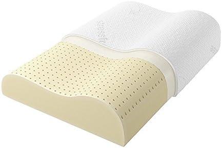 Ecosafeter Memory Foam Pillow that